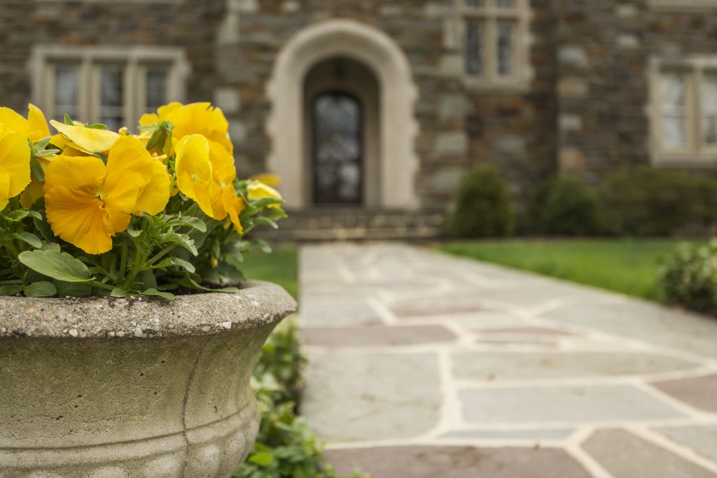 pansies in front of stone home